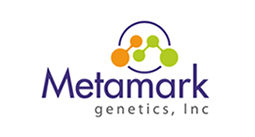 Metamark Logo design by DePinho Design, Mahopac New York